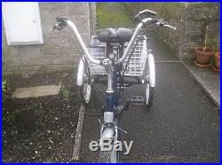 Adult three wheel trike PROMAX. Converted to electric