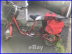 Adult tricycle with electric motor